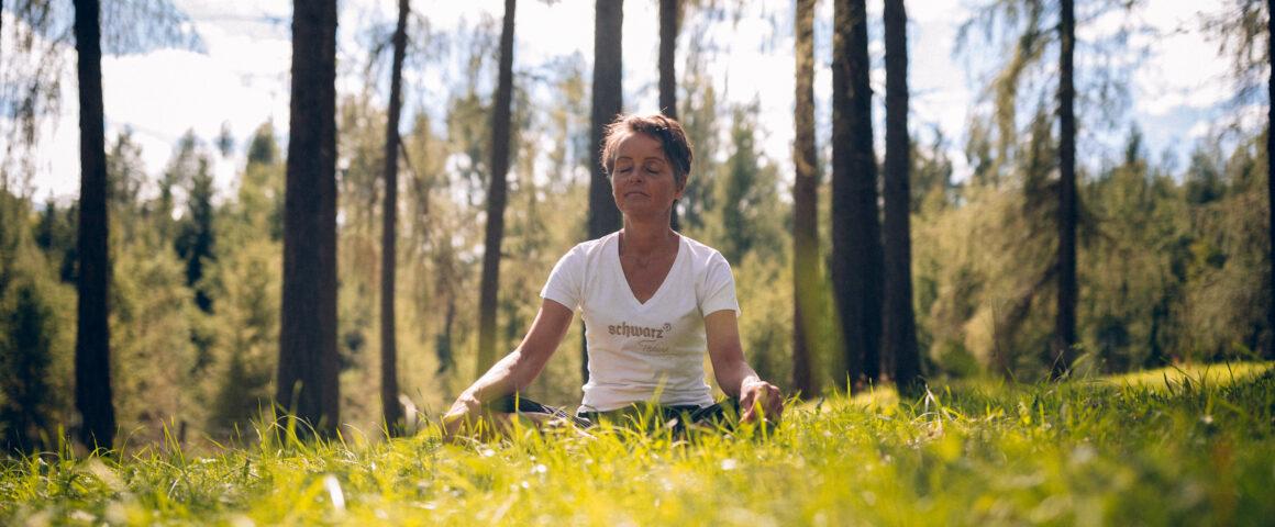 Holistic Health beim Waldbaden