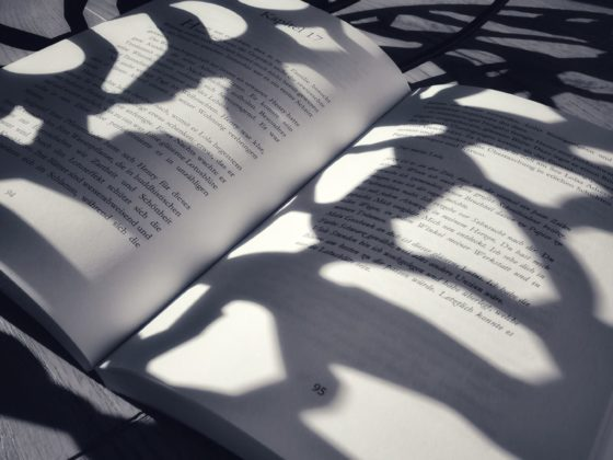 Lesemomente-mit-Isa-Dünnes-Glas-Roman-Blick-ins-Buch